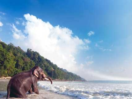 Andaman tour package from Varanasi